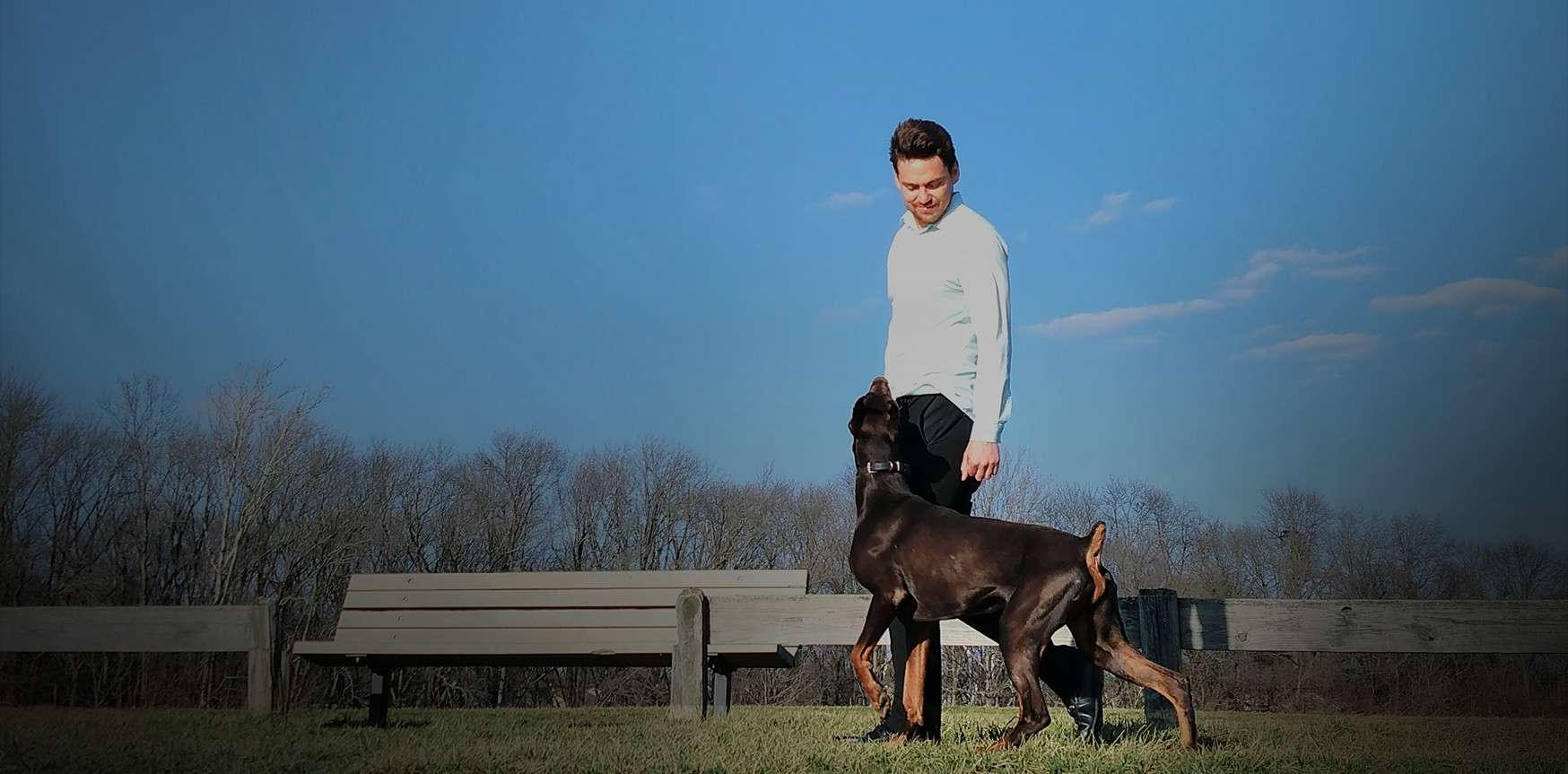 Good Behavior Dog Training Salem Or